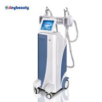 Wholesale Body Shaper Cryolipolysis Slimming Machine Weight Loss With Membranes from china suppliers