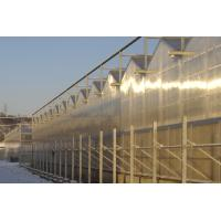 Wholesale 4000mm section Commercial Venlo polycarbonate greenhouse 2 / 3 ridges per span , 9600mm span from china suppliers
