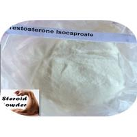 Wholesale 15262-86-9 Muscle Gain Steroids Testosterone Isocaproate For Male Sexual Dysfunction from china suppliers