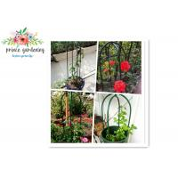 Wholesale Eco Friendly Solid Durable Green Ushape Pipe Flower Support Garden Plant Supports from china suppliers