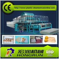 China Rotary Paper Pulp Egg Tray Machine , Recycled Paper Egg Tray Production Line on sale