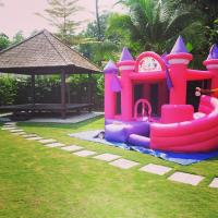 Wholesale Pink Princess Inflatable Bouncy Castle , inflatable jumping castles For Girl's Party from china suppliers