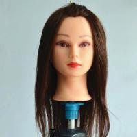 Wholesale New Design Female Mannequin Head, Stable quality Brown hair from china suppliers
