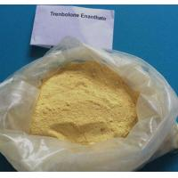 Wholesale White Crystalline Trenbolone Powder Trenbolone acetate steroids powder Natural Bodybuilding Steroids CAS 10161-34-9 from china suppliers