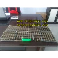 Wholesale Folding Live Animal Dog Trap for Hunting from china suppliers