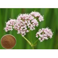 Buy cheap Natural Valerian Root Extract, 0.8% Valeric Acid for Antibacterial and antiviral CAS 8057-49-6 from wholesalers