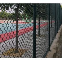 China High Strength Green Wire Mesh Fence 50*100mm PVC Coated Iron Wire Material for sale