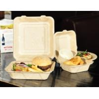 PLATE /TRAY