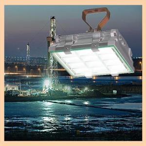 China Harsh and hazardous area usage 60w led explosion proof flood light on sale