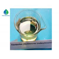 Bodybuilding Liquid TU-500/Test U/Testosterone Un/Testosterone Undecanoate for sale