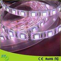 China Brightest Warm White Rgb LED Ribbon Tape Light Strips DC 12v / 24v For Cars for sale