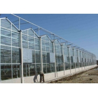 Wholesale Recycling Anti Snow Planting Multi Span Glass Greenhouse from china suppliers
