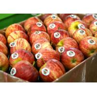 China Food Fruit Custom Printed Adhesive Labels Coated Paper Removable Glue on sale