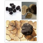 China Black Truffle Black Truffle Powder for sale