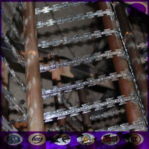 China 300g zinc coating Razor barbed wire BTO-22 on sale
