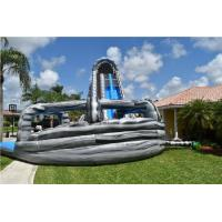 Wholesale Customized Garden Dual Lane Inflatable Water Slides Pool For Fun from china suppliers
