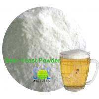 60% Crude Protein Brewers Yeast Animal Feed Fodder Yeast SYE-BE60