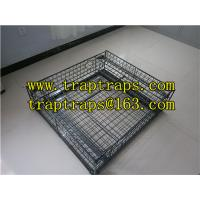 Wholesale Crab Trap/Cage, Fish Crab Traps/Live Animal Traps from china suppliers