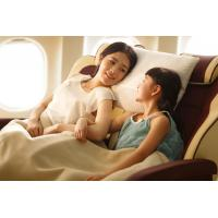 Wholesale Disposable Airline Blanket, Fire Retardant, FAR 25.853, Light Weight but Warm from china suppliers