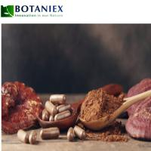 China Enhance Body Immune System Shell-Broken Reishi Mushroom Powder Reishi Extract Ganoderma Lucidum Extract Polysaccharides on sale