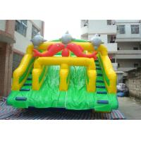Wholesale Fish Double Climbing Ladders Commercial Inflatable Slide For Adult from china suppliers