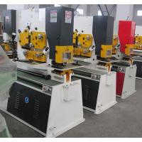 Buy cheap Q35Y Combined Hydraulic ironworker Machinery , Steel Hole Punch Machine from Wholesalers