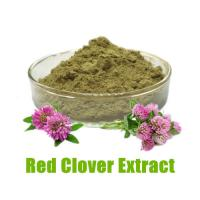Wholesale Red Clover Extract-100% Natural- Improve Health from china suppliers