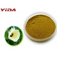 Wholesale Safety Pharmaceutical Grade Okra Extract Powder Activate Male Central Nervous from china suppliers