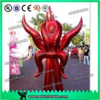Wholesale Holiday Festival Parade Decoration Inflatable Cartoon Walking Costume Wing Inflatable from china suppliers