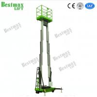 China 12m Double Mast Vertical Lift Loading Capacity 200Kg for sale