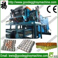 China Paper Pulp Moulding Machine Made in china on sale