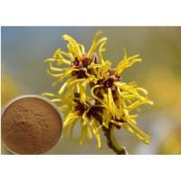 Wholesale Hamamelis Virginiana Extract Cosmetic Raw Materials For Moisturize / Skin Whitening from china suppliers