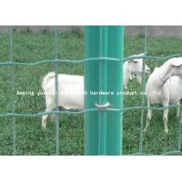 Wholesale Anti Corrosion Holland Wire Mesh , Welded Wire Fence Panels Custom Size from china suppliers
