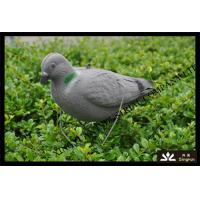 Buy cheap XPE FOAM Material pigeon decoy for hunter hunting from wholesalers