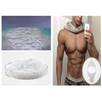 Buy cheap 99% Purity Testosterone Anabolic Steroid For Muscle Growth CAS 315-37-7 , White Powder from Wholesalers