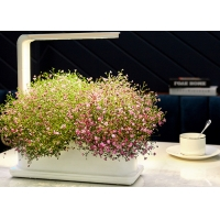 Wholesale Decorative 12V 9W PP Home Hydroponic Growing Systems from china suppliers