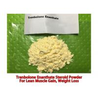 Buy cheap 99% Trenbolone Enanthate CAS No 10161-33-8 Male Steroids Parabolan for Bodybuilding QA Supply from wholesalers