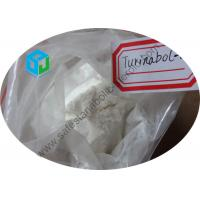 Wholesale Testosterone Raw Steroid Powders Oral Turinabol 4 Chlorodehydromethyltestosterone from china suppliers