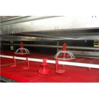 Wholesale (RCNH2013) Plastic Chicken/Broiler Feeding Pan from china suppliers