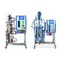 China Automatic Control In Situ Sterilizable Fermenter Adjustable Speed AC Motor With Gear Box for sale
