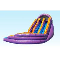 Wholesale Purple And Orange Inflatable Curvy Water Slide Double Lane 0.55MM PVC Materila Slide from china suppliers