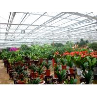 Wholesale Flower Exhibition Multi Span Greenhouse , High Output Polycarbonate Sheet Greenhouse from china suppliers