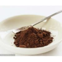 Professional Unsweetened Alkalized Cocoa Powder Bitter 10-12% HACCP Light Brown To Dark Brown Powder