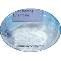 Wholesale Testosterone Enanthate Steroids White Bodybuilding Powder Oil Test Enanthate 315-37-7 from china suppliers