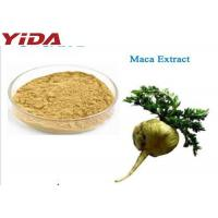 Wholesale Maca Extract Sex Steroid Hormones For Men Healthy from china suppliers