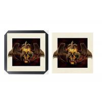 Wholesale SGS 3d Lenticular Picture With PS Frame 0.6mm Pet Thickness 5d Photos from china suppliers