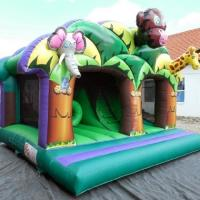 Wholesale Fantastic 3D Artwork Children Inflatable Combo Funny Play And Slide Jungle Kingdom from china suppliers