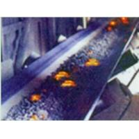 China Heat Resistant Conveyor Belt (Special) on sale