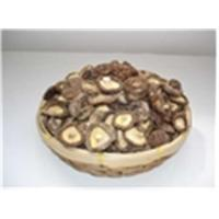 Wholesale Shiitake Mushroom from china suppliers