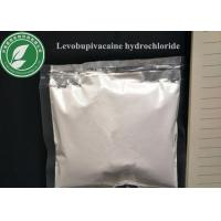 Wholesale 99% Local Anesthetic Powder CAS 27262-48-2 Levobupivacaine Hydrochloride from china suppliers